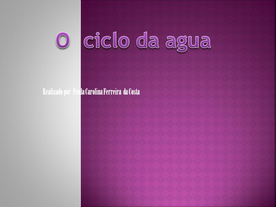 Realizado por Paula Carolina Ferreira da Costa
