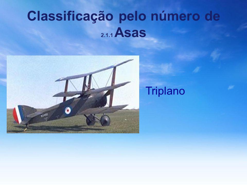 Classificação pelo número de 2.1.1 Asas Triplano