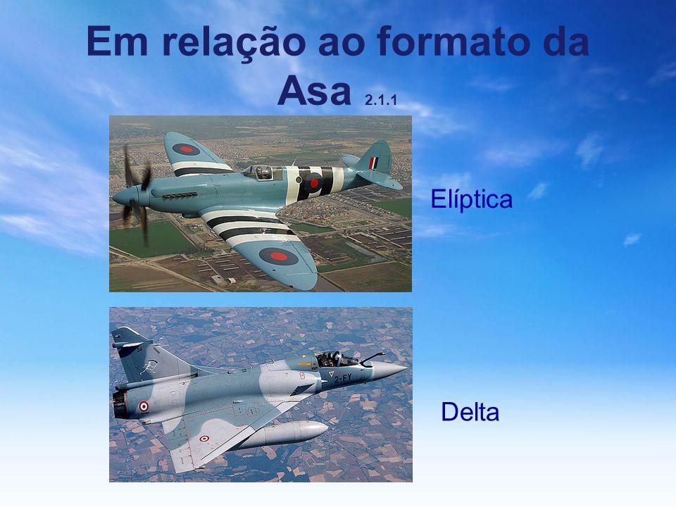 Em relação ao formato da Asa 2.1.1 Elíptica Delta