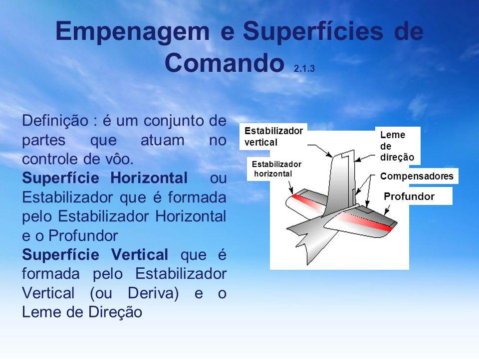 Empenagem e Superfícies de Comando 2.1.3 Definição : é um conjunto de partes que atuam no controle de vôo. Superfície Horizontal ou Estabilizador que