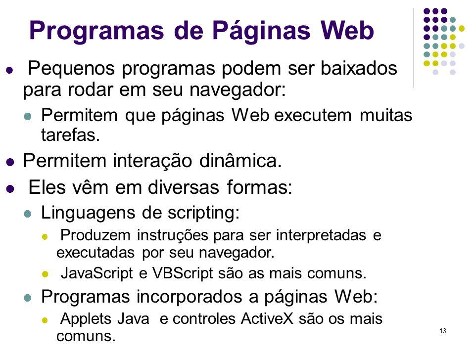 13 Programas de Páginas Web Pequenos programas podem ser baixados para rodar em seu navegador: Permitem que páginas Web executem muitas tarefas. Permi