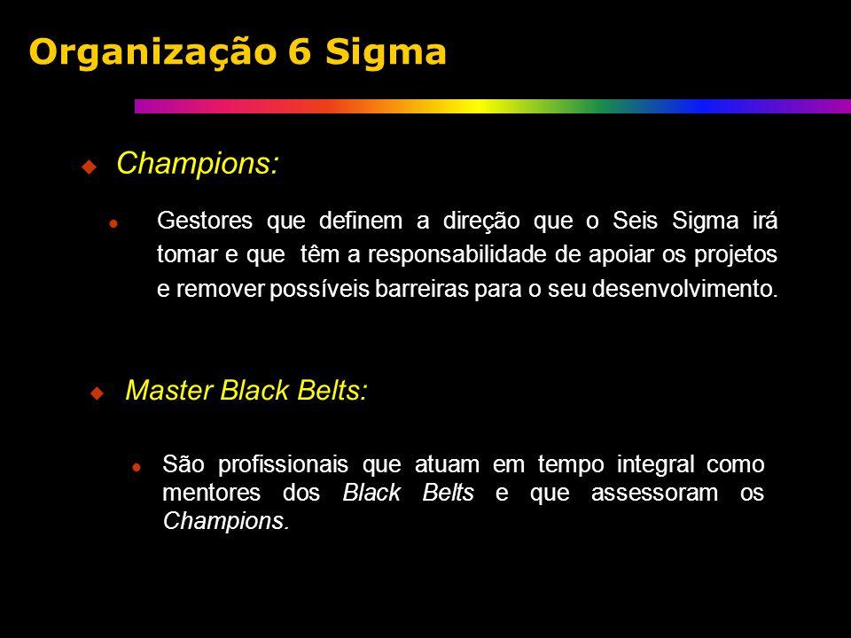 Champions: Gestores que definem a direção que o Seis Sigma irá tomar e que têm a responsabilidade de apoiar os projetos e remover possíveis barreiras para o seu desenvolvimento.