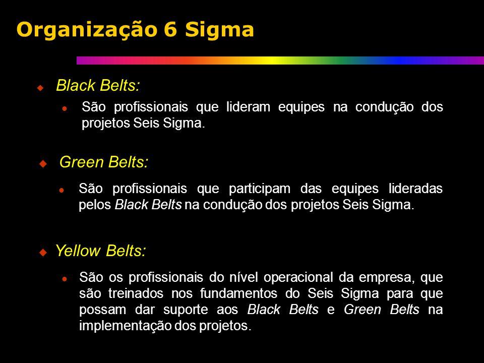 Black Belts: São profissionais que lideram equipes na condução dos projetos Seis Sigma.