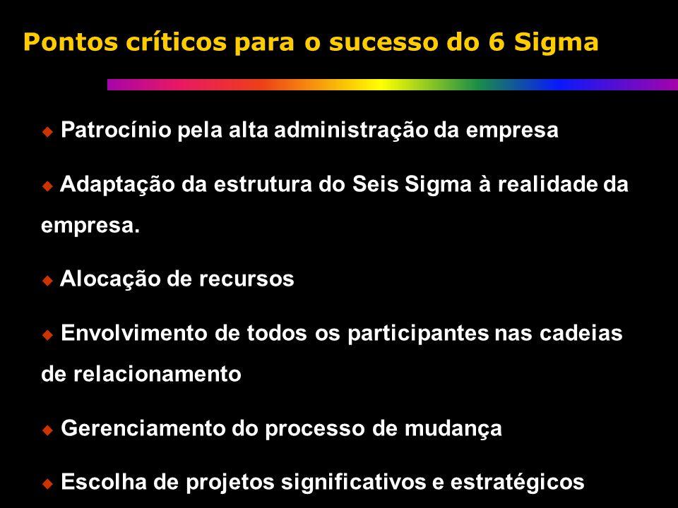 Patrocínio pela alta administração da empresa Adaptação da estrutura do Seis Sigma à realidade da empresa.