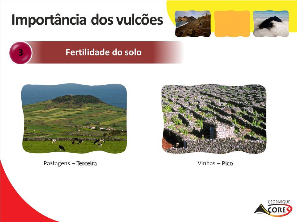 Fertilidade do solo 3 Pico Vinhas – Pico Terceira Pastagens – Terceira Importância dos vulcões