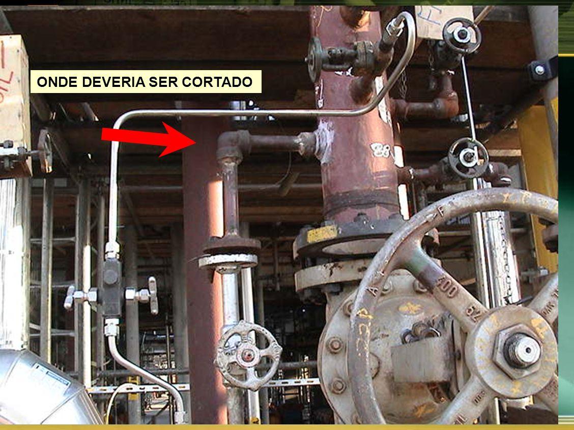 ONDE DEVERIA SER CORTADO