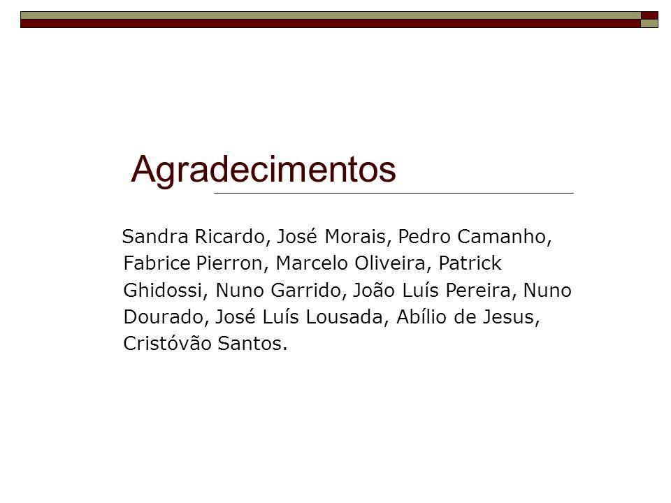 Agradecimentos Sandra Ricardo, José Morais, Pedro Camanho, Fabrice Pierron, Marcelo Oliveira, Patrick Ghidossi, Nuno Garrido, João Luís Pereira, Nuno