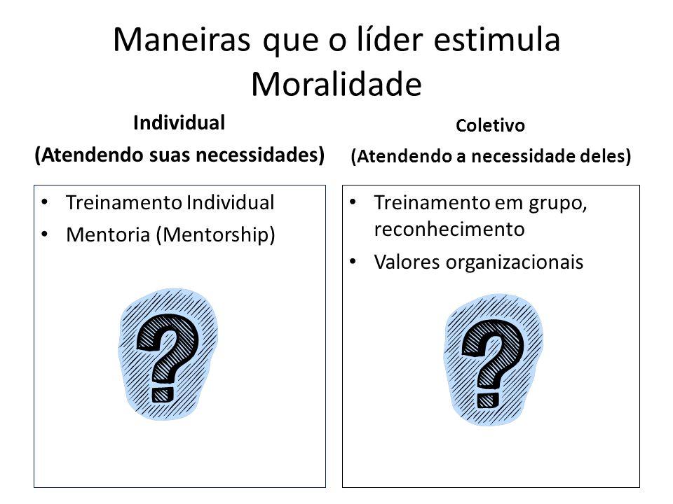 Maneiras que o líder estimula Moralidade Individual (Atendendo suas necessidades) Treinamento Individual Mentoria (Mentorship) Coletivo (Atendendo a n