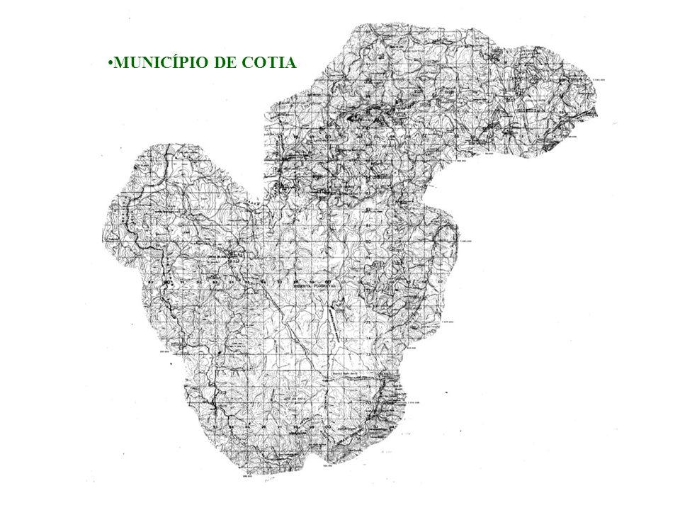 MUNICÍPIO DE COTIA