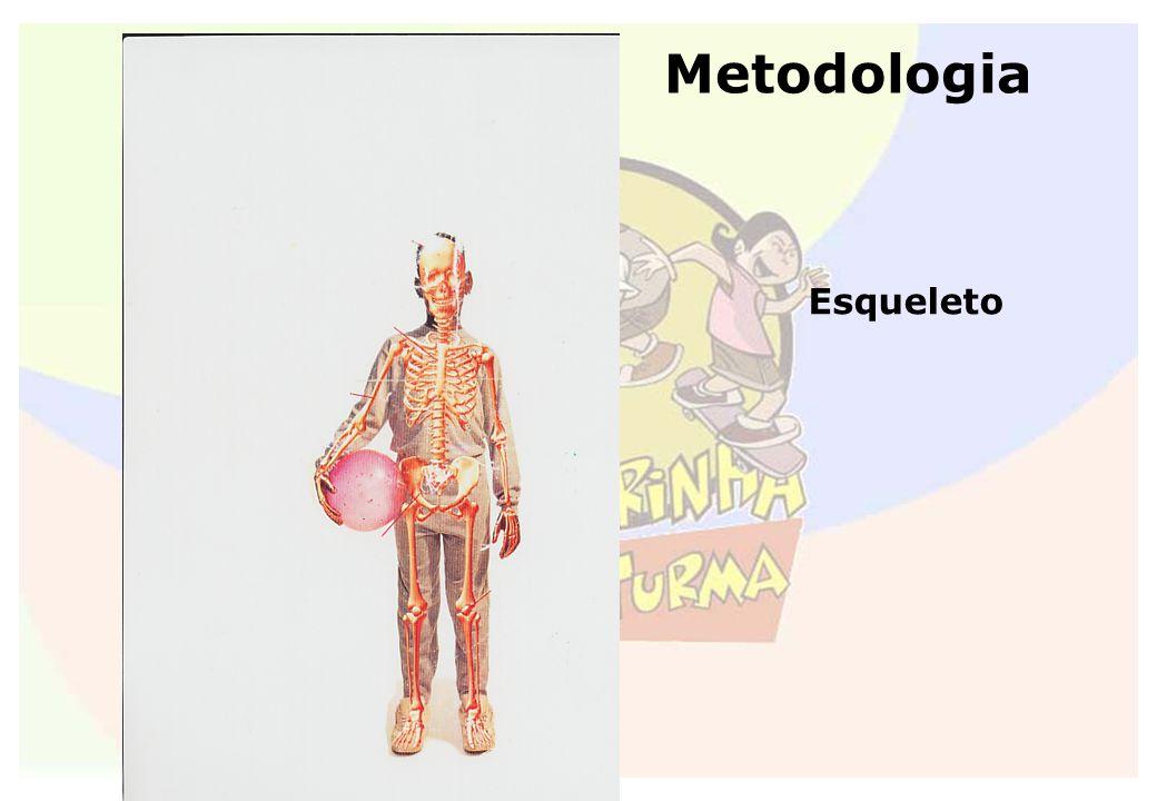 Metodologia Esqueleto