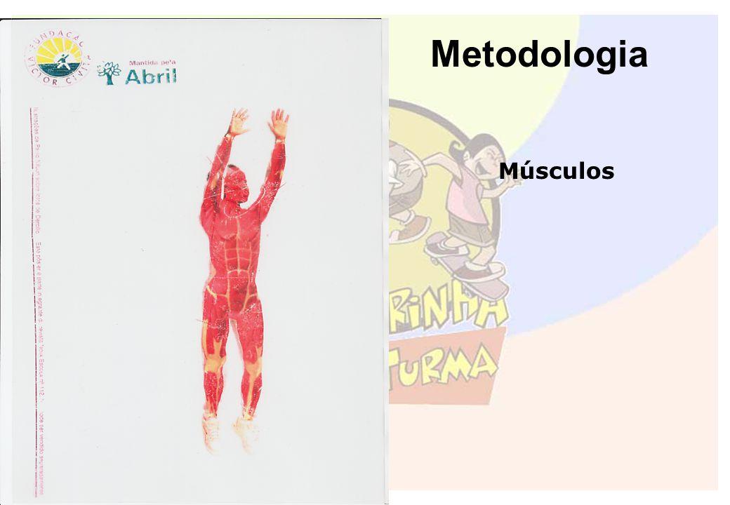 Metodologia Músculos