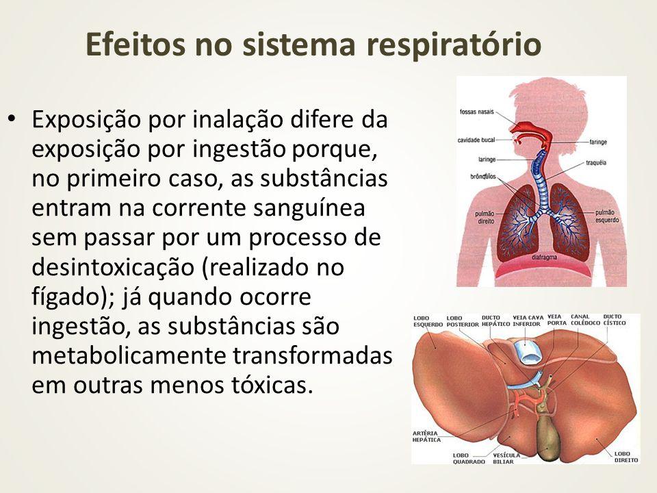 Efeitos no sistema respiratório Exposição por inalação difere da exposição por ingestão porque, no primeiro caso, as substâncias entram na corrente sa