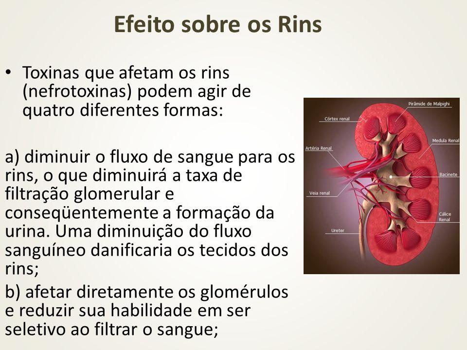 Toxinas que afetam os rins (nefrotoxinas) podem agir de quatro diferentes formas: a) diminuir o fluxo de sangue para os rins, o que diminuirá a taxa d