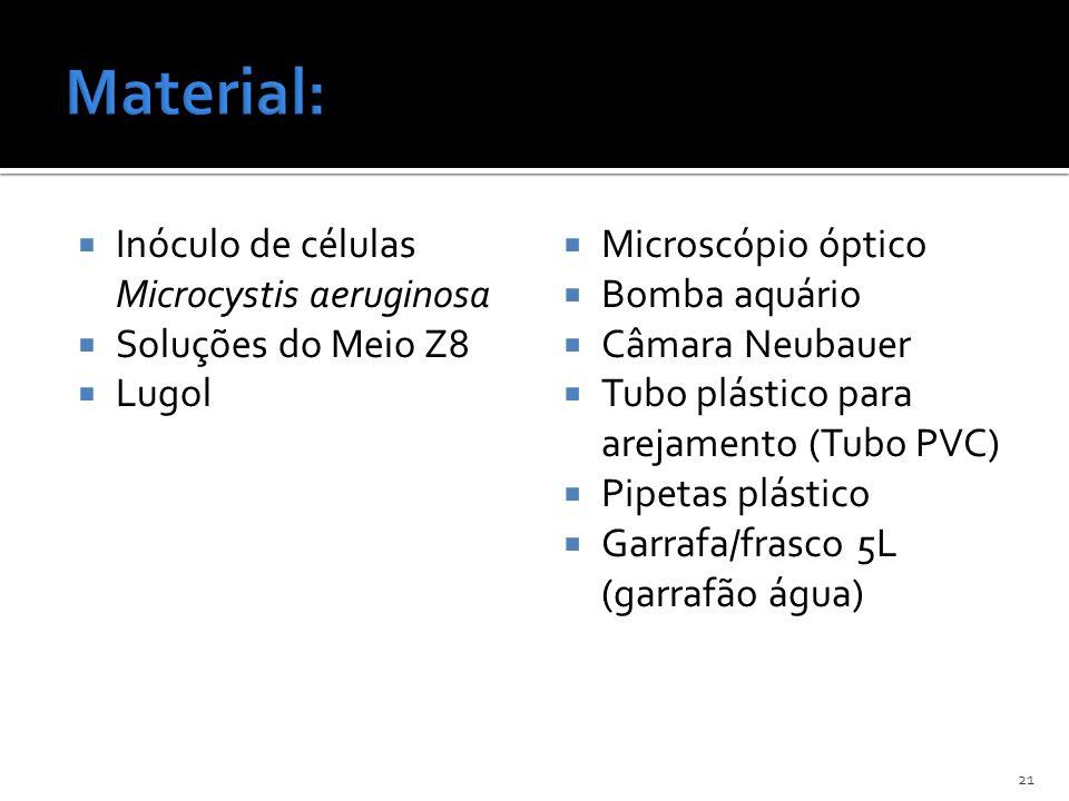 Inóculo de células Microcystis aeruginosa Soluções do Meio Z8 Lugol Microscópio óptico Bomba aquário Câmara Neubauer Tubo plástico para arejamento (Tu