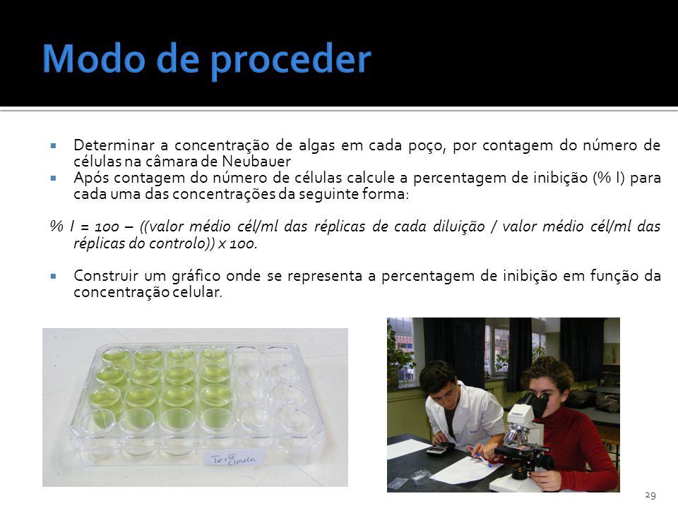 Determinar a concentração de algas em cada poço, por contagem do número de células na câmara de Neubauer Após contagem do número de células calcule a