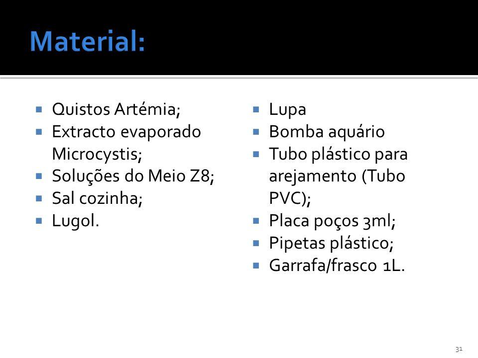 Quistos Artémia; Extracto evaporado Microcystis; Soluções do Meio Z8; Sal cozinha; Lugol. Lupa Bomba aquário Tubo plástico para arejamento (Tubo PVC);