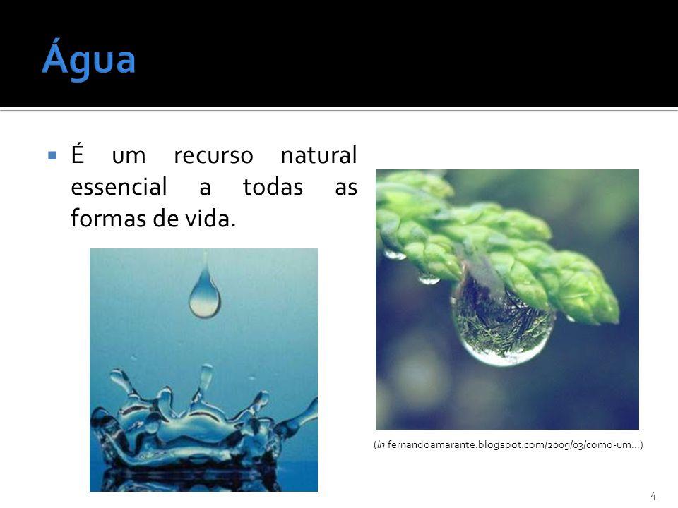 É um recurso natural essencial a todas as formas de vida. 4 (in fernandoamarante.blogspot.com/2009/03/como-um...)
