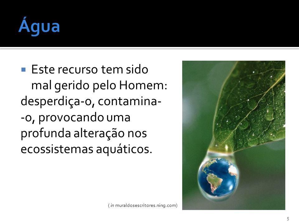 Este recurso tem sido mal gerido pelo Homem: desperdiça-o, contamina- -o, provocando uma profunda alteração nos ecossistemas aquáticos. 5 ( in muraldo