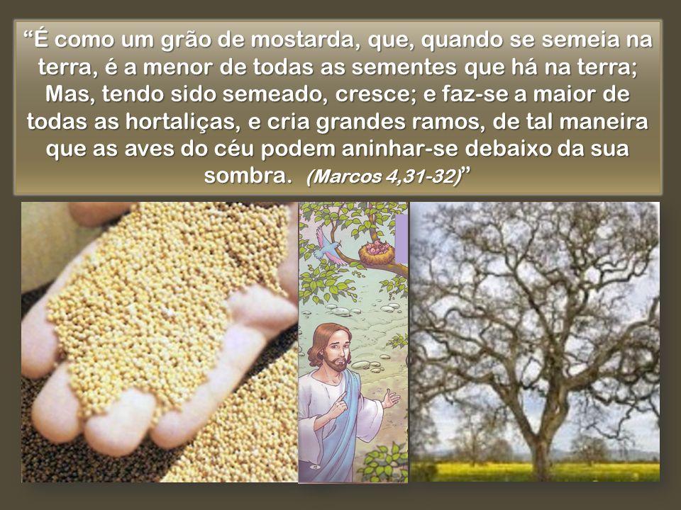 É como um grão de mostarda, que, quando se semeia na terra, é a menor de todas as sementes que há na terra; Mas, tendo sido semeado, cresce; e faz-se