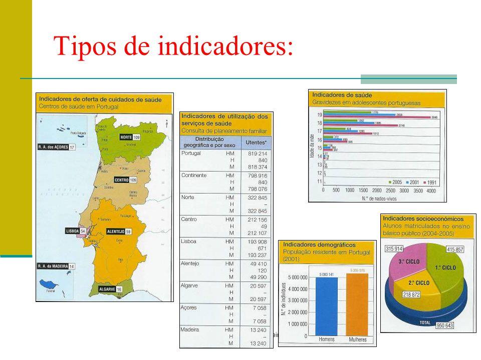 Prof. Teresa Condeixa Monteiro – 2008/2009 Tipos de indicadores: