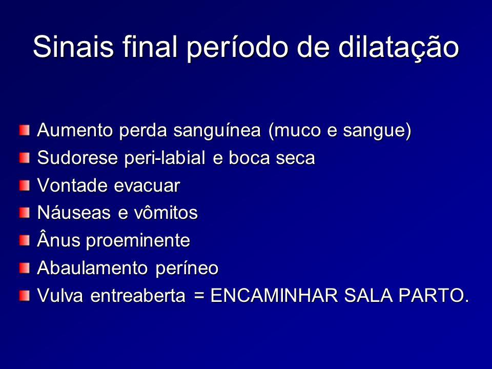 Final período dilatação