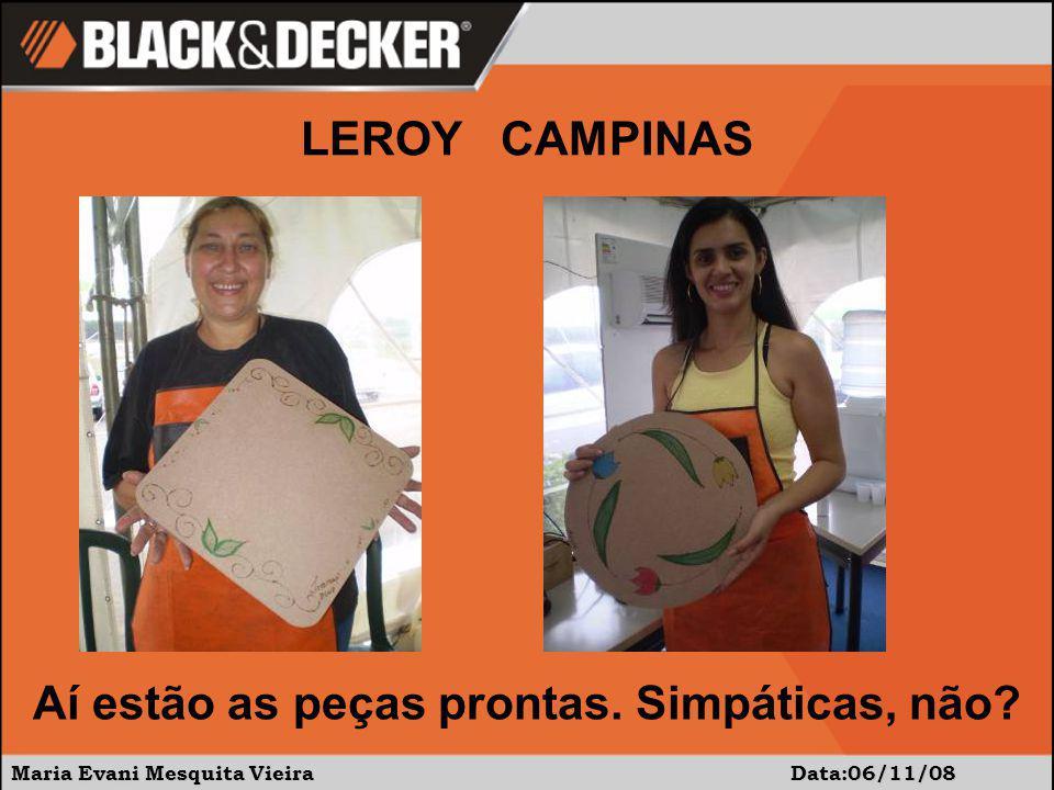 Maria Evani Mesquita Vieira Data:06/11/08 Aí estão as peças prontas. Simpáticas, não? LEROY CAMPINAS