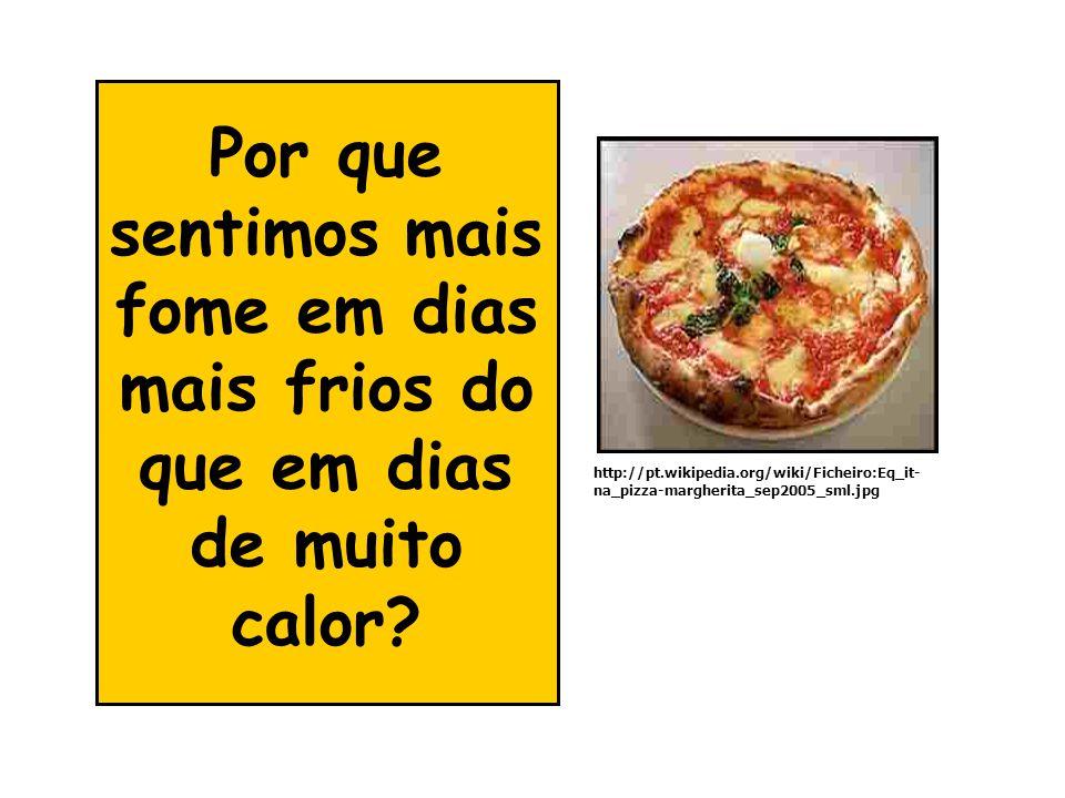 Por que sentimos mais fome em dias mais frios do que em dias de muito calor? http://pt.wikipedia.org/wiki/Ficheiro:Eq_it- na_pizza-margherita_sep2005_