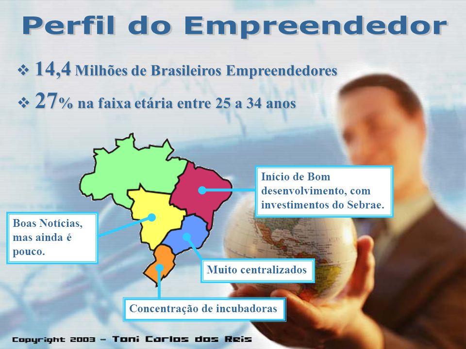 14,4 Milhões de Brasileiros Empreendedores 14,4 Milhões de Brasileiros Empreendedores 27 % na faixa etária entre 25 a 34 anos 27 % na faixa etária entre 25 a 34 anos Boas Notícias, mas ainda é pouco.