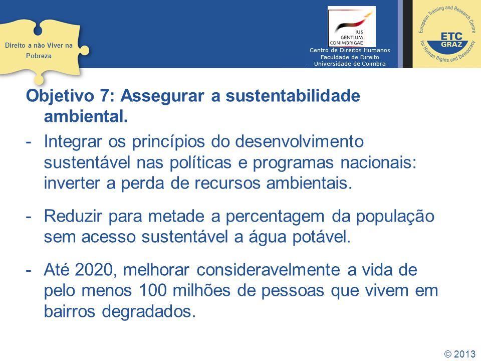 © 2013 Objetivo 8: Desenvolver uma parceria global para o desenvolvimento.