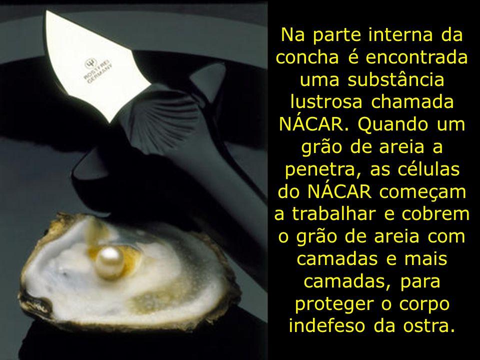 Uma ostra que não foi ferida não produz pérolas