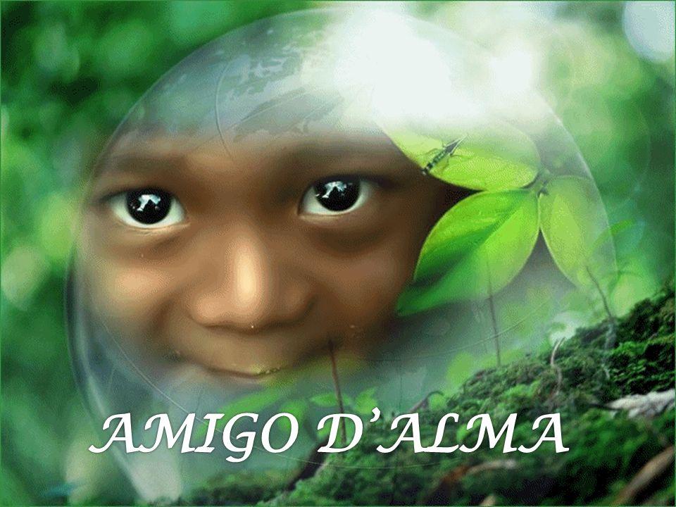 Anam cara é uma expressão celta que significa Amigos de minha alma ou Amigo dalma.