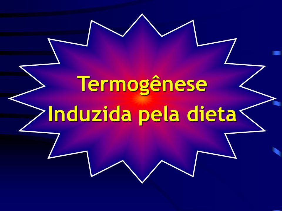 Termogênese Induzida pela dieta