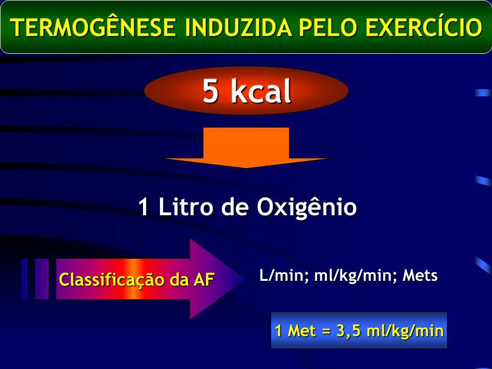 TERMOGÊNESE INDUZIDA PELO EXERCÍCIO 5 kcal 1 Litro de Oxigênio L/min; ml/kg/min; Mets Classificação da AF 1 Met = 3,5 ml/kg/min