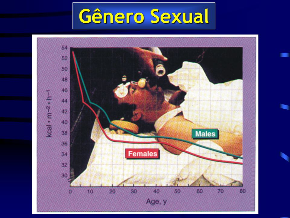 Gênero Sexual