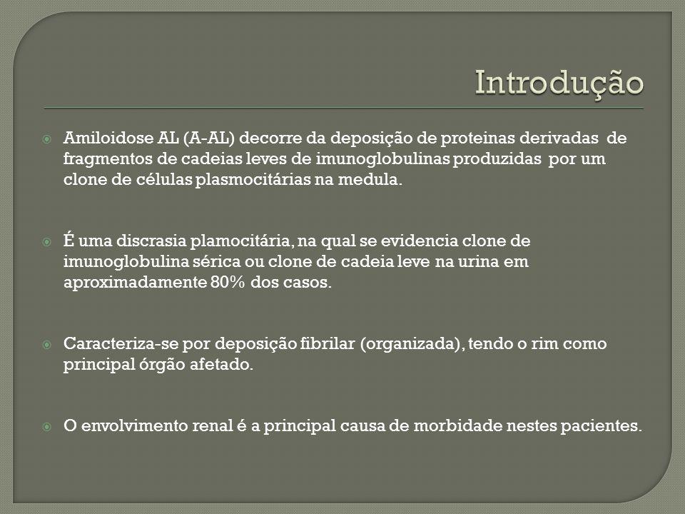 Amiloidose AL (A-AL) decorre da deposição de proteinas derivadas de fragmentos de cadeias leves de imunoglobulinas produzidas por um clone de células