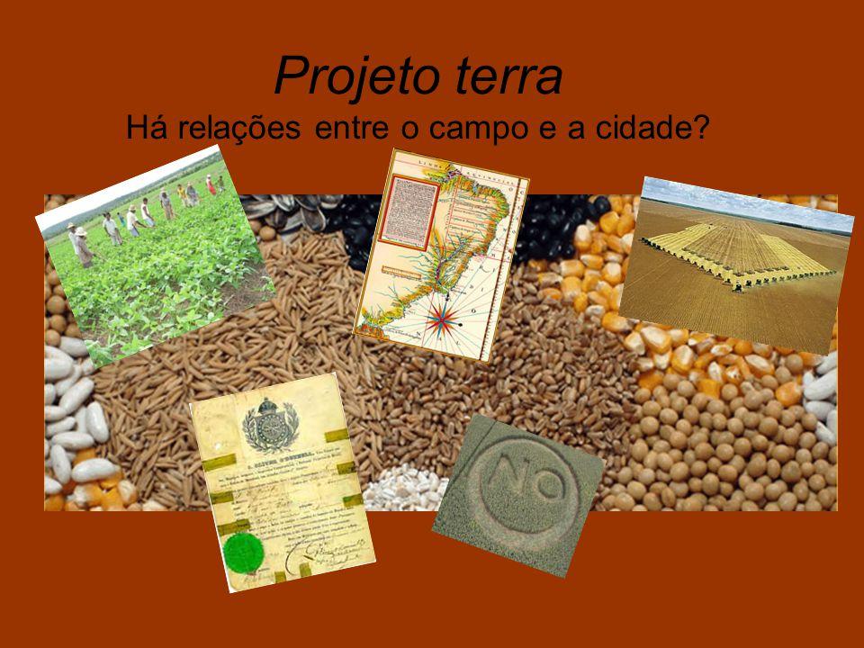 Implantação da produção monocultora de citrus, na Fazenda Santa Elisa Dois Brasis na produção agrícola: a mono e a policultura.
