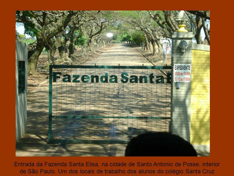 Entrada da Fazenda Santa Elisa, na cidade de Santo Antonio de Posse, interior de São Paulo.