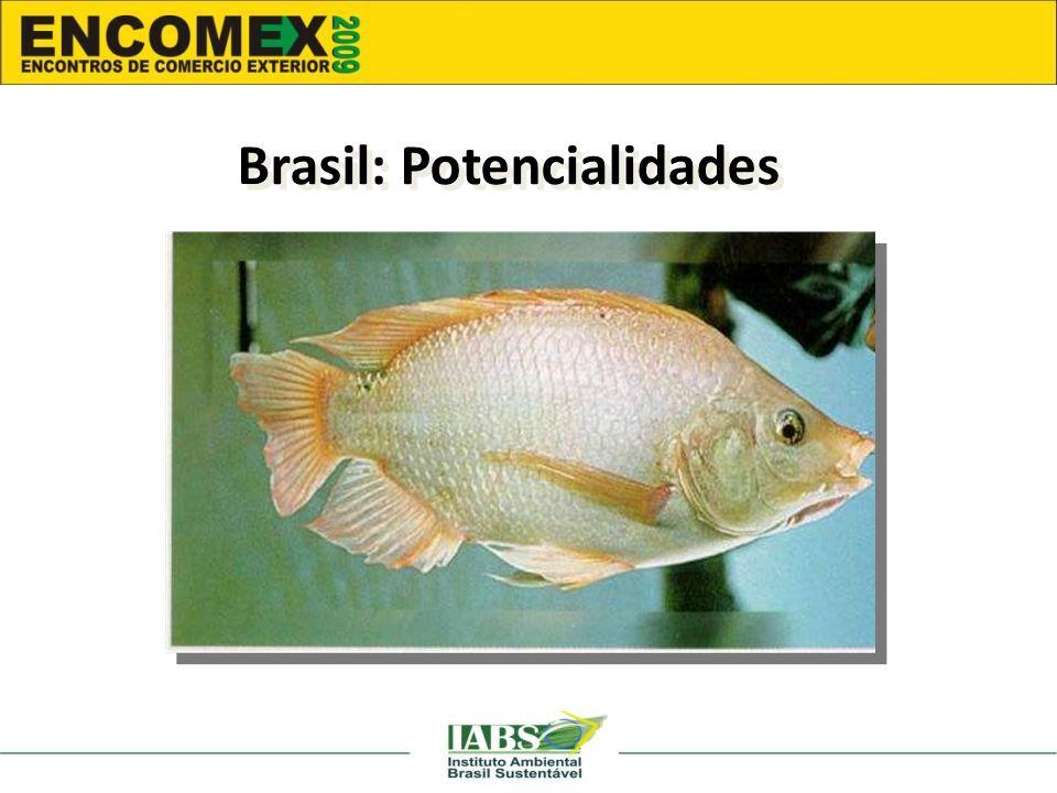 Brasil: Potencialidades