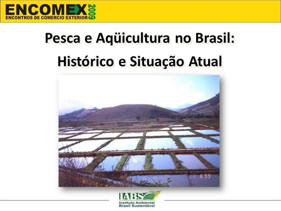 Pesca e Aqüicultura no Brasil: Histórico e Situação Atual Pesca e Aqüicultura no Brasil: Histórico e Situação Atual