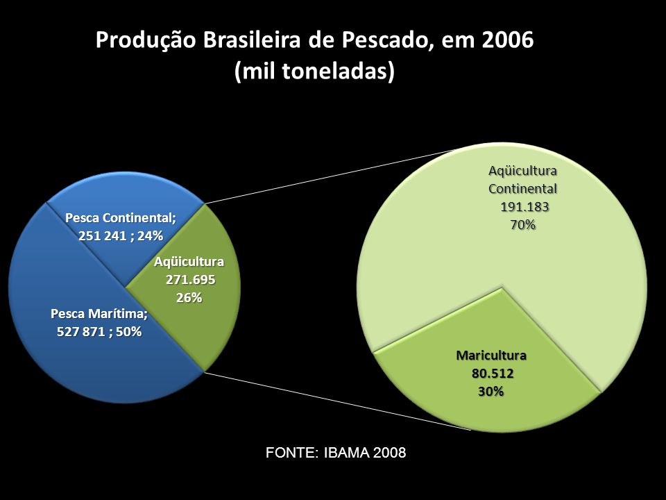 FONTE: IBAMA 2008
