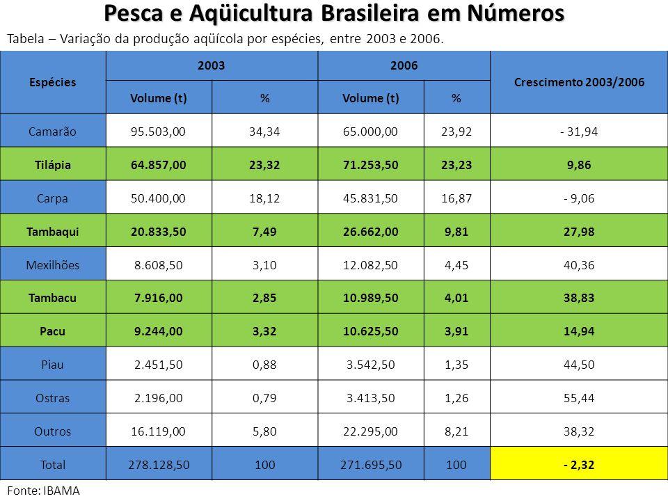 Fonte: IBAMA Espécies 20032006 Crescimento 2003/2006 Volume (t)% % Camarão95.503,0034,3465.000,0023,92- 31,94 Tilápia64.857,0023,3271.253,5023,239,86 Carpa50.400,0018,1245.831,5016,87- 9,06 Tambaqui20.833,507,4926.662,009,8127,98 Mexilhões8.608,503,1012.082,504,4540,36 Tambacu7.916,002,8510.989,504,0138,83 Pacu9.244,003,3210.625,503,9114,94 Piau2.451,500,883.542,501,3544,50 Ostras2.196,000,793.413,501,2655,44 Outros16.119,005,8022.295,008,2138,32 Total278.128,50100271.695,50100- 2,32 Pesca e Aqüicultura Brasileira em Números Tabela – Variação da produção aqüícola por espécies, entre 2003 e 2006.
