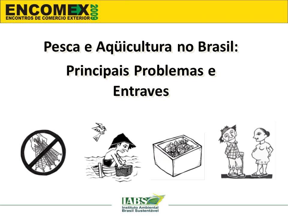 Pesca e Aqüicultura no Brasil: Principais Problemas e Entraves Pesca e Aqüicultura no Brasil: Principais Problemas e Entraves