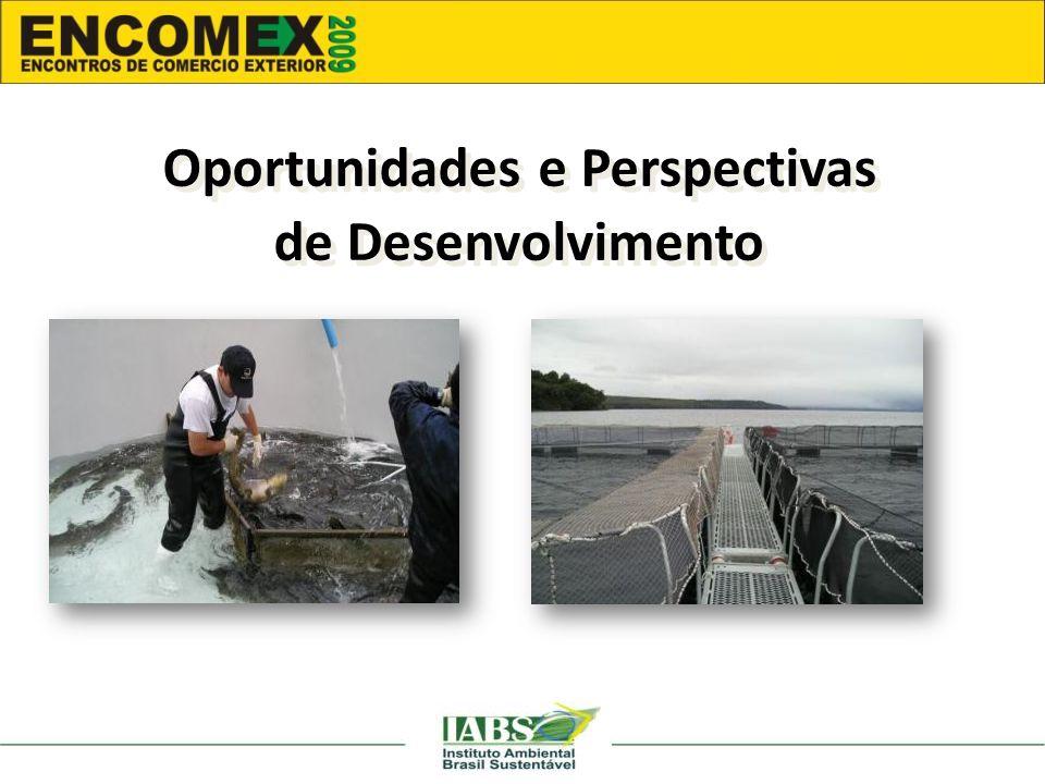 Oportunidades e Perspectivas de Desenvolvimento