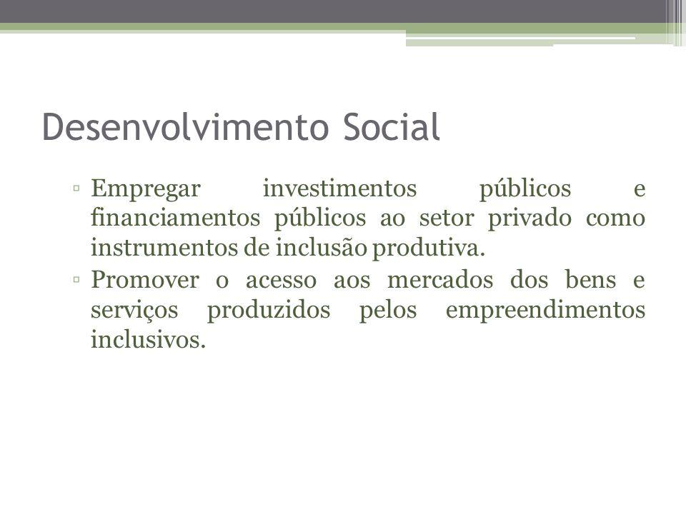 Desenvolvimento Social Empregar investimentos públicos e financiamentos públicos ao setor privado como instrumentos de inclusão produtiva. Promover o