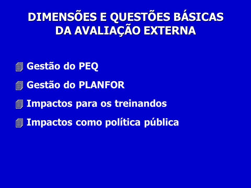 Gestão do PEQ Gestão do PLANFOR Impactos para os treinandos Impactos como política pública DIMENSÕES E QUESTÕES BÁSICAS DA AVALIAÇÃO EXTERNA