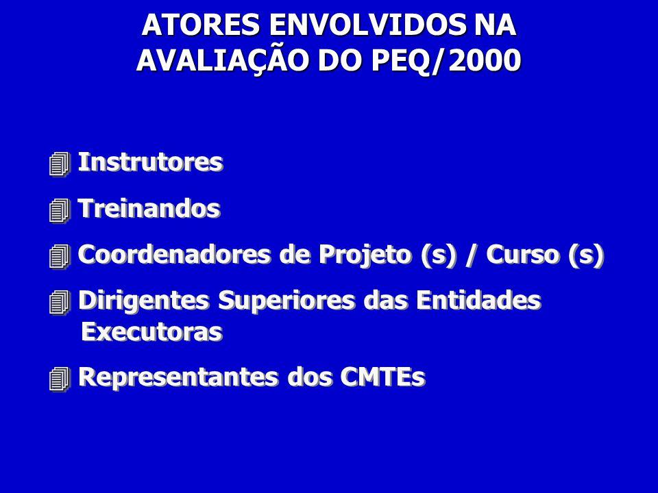 Instrutores Treinandos Coordenadores de Projeto (s) / Curso (s) Dirigentes Superiores das Entidades Executoras Representantes dos CMTEs Instrutores Treinandos Coordenadores de Projeto (s) / Curso (s) Dirigentes Superiores das Entidades Executoras Representantes dos CMTEs ATORES ENVOLVIDOS NA AVALIAÇÃO DO PEQ/2000