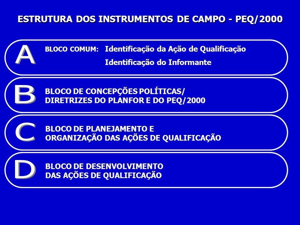 BLOCO COMUM: Identificação da Ação de Qualificação Identificação do Informante BLOCO DE CONCEPÇÕES POLÍTICAS/ DIRETRIZES DO PLANFOR E DO PEQ/2000 BLOCO DE PLANEJAMENTO E ORGANIZAÇÃO DAS AÇÕES DE QUALIFICAÇÃO BLOCO DE DESENVOLVIMENTO DAS AÇÕES DE QUALIFICAÇÃO ESTRUTURA DOS INSTRUMENTOS DE CAMPO - PEQ/2000