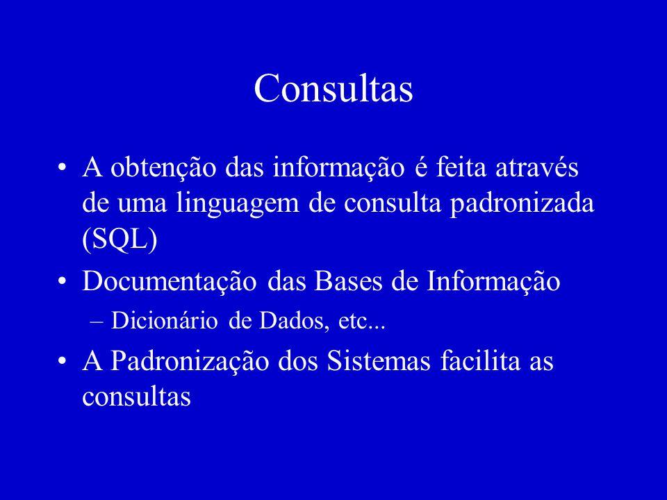 Consultas A obtenção das informação é feita através de uma linguagem de consulta padronizada (SQL) Documentação das Bases de Informação –Dicionário de Dados, etc...
