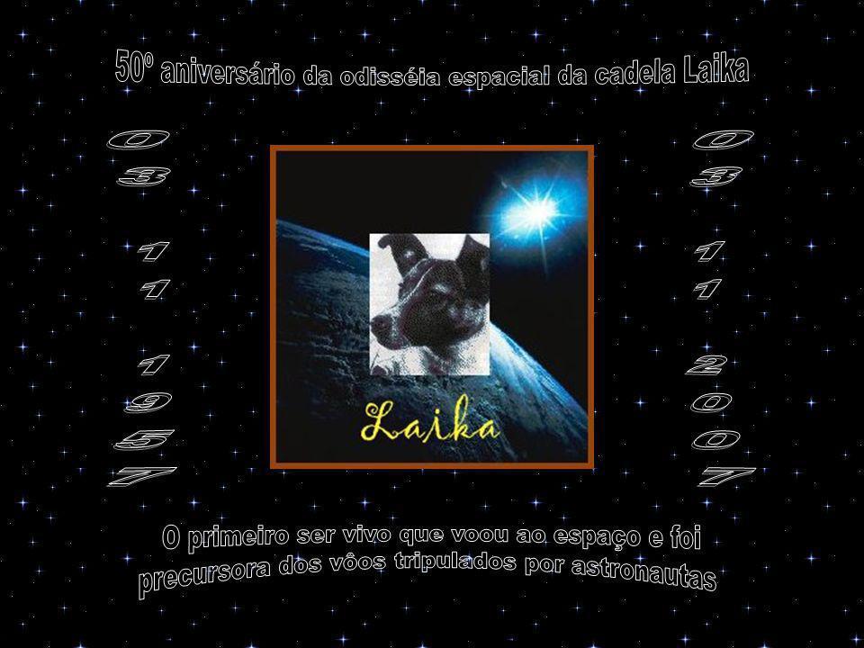 Entretanto, Moscou informava que Laika se comportava calma e estável em seu vôo e que, em poucos dias, regressaria de volta à Terra, primeiro em sua cápsula espacial, e depois de pára-quedas.