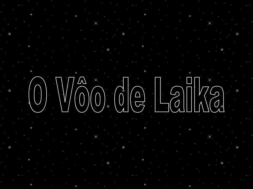 Assim como outros animais, Laika foi submetida a intensos e estressantes treinos, como permanecer em compartimentos cada vez menores por até 20 dias, altos ruídos, vibrações, acelerações e cargas G excessivas em máquinas centrífugas.